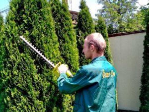 Стрижка растений в Донецке