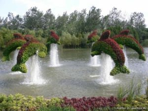 Топиарное искусство Green art